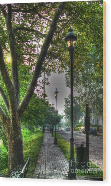 Walkway Down Riverside Drive Wood Print