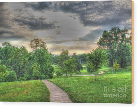 Walkway In A Park Wood Print