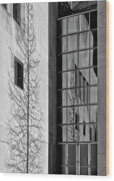 Wall And Windows Metropolitan Museum Nyc Wood Print by Robert Ullmann