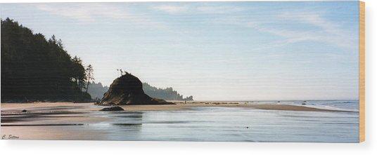 Washington Shore Wood Print
