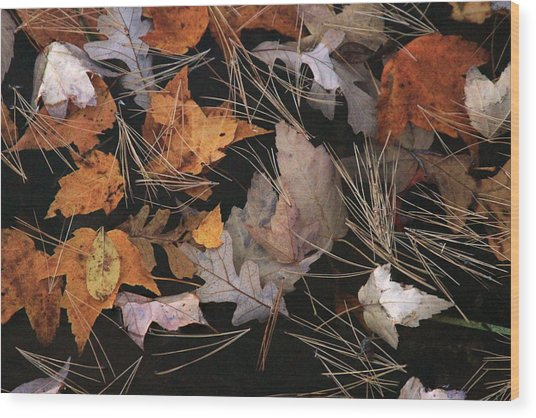 Water And Leafs  Wood Print by Mike Stouffer
