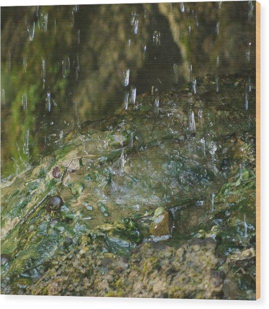Water Droplets Wood Print by Joseph Shaffer