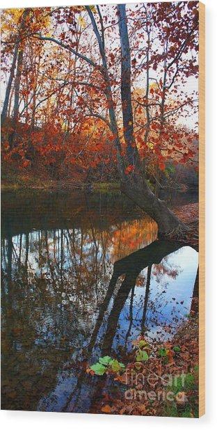 Water In Fall Wood Print