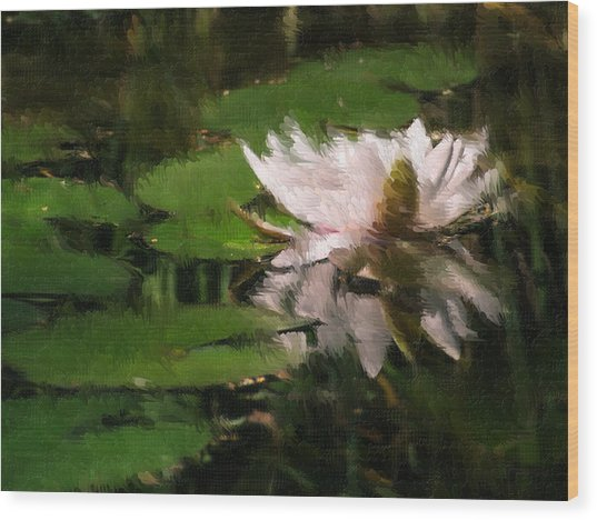 Water Lilly Wood Print by Heiko Mahr
