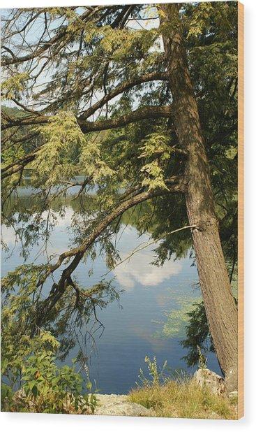 Water Wood Print by Margaret Steinmeyer