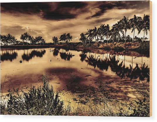 Water Wood Print by Nicky Ledesma
