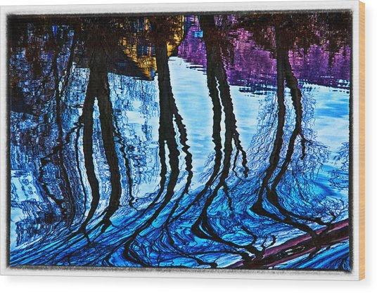 Water Spirits On Rhine Wood Print