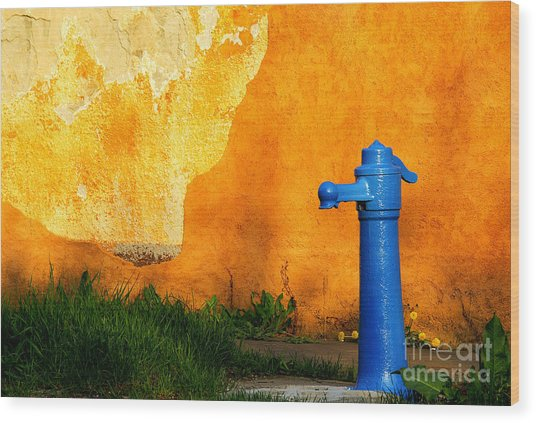 Water Well Wood Print by Odon Czintos