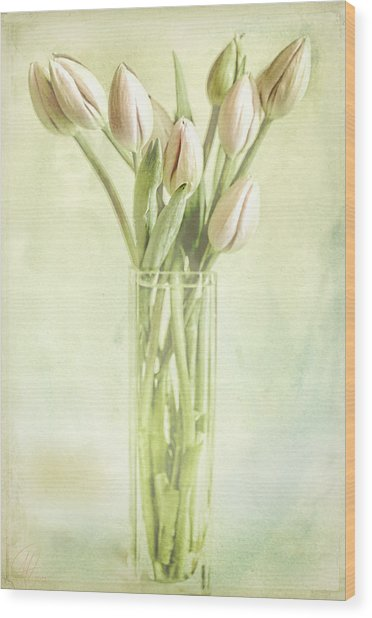 Watercolour Tulips  Wood Print by Margaret Hormann Bfa