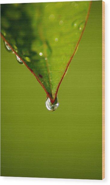 Waterdrop Wood Print