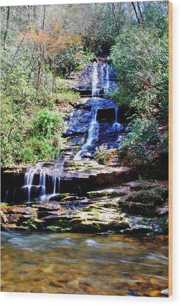Waterfall Wood Print by Carrie Munoz