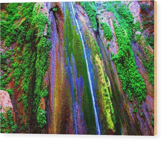Waterfall  Wood Print by Catherine Natalia  Roche