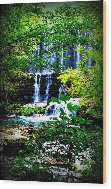 Waterfall Wood Print by Charles Covington