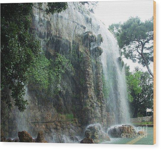Waterfall In Nice Wood Print by Amalia Suruceanu