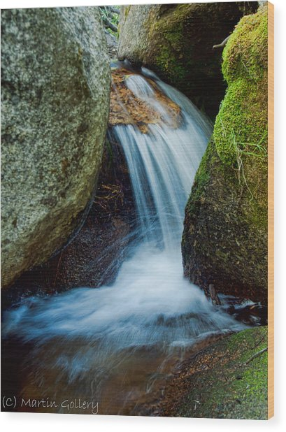 Waterfall Wood Print by Martin  Gollery