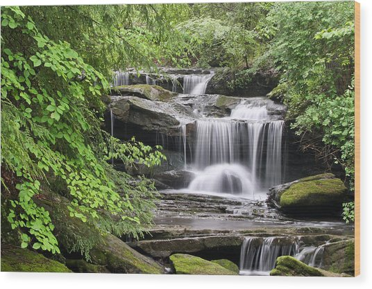 Waterfall Near Mabbitt Spring Wood Print