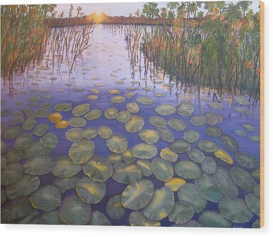 Waterlillies South Africa Wood Print