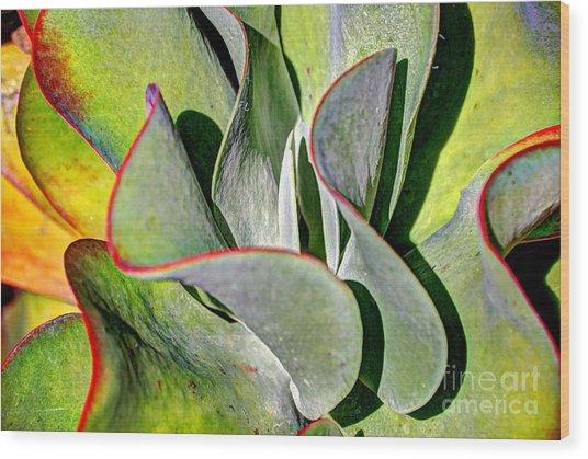 Waves Vegetable 2 Wood Print by Elena Mussi