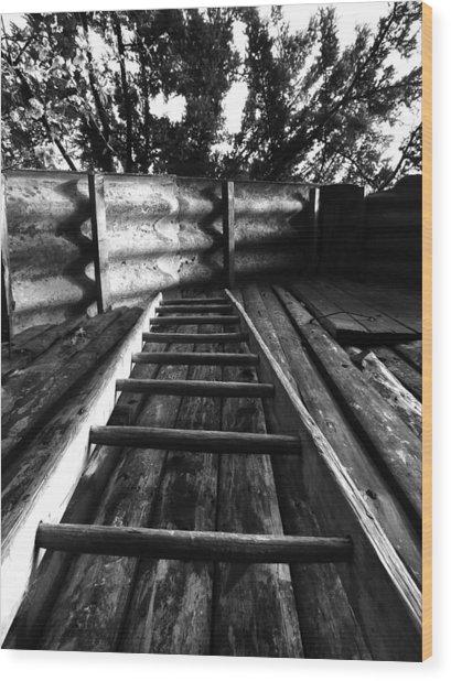Way Up Wood Print