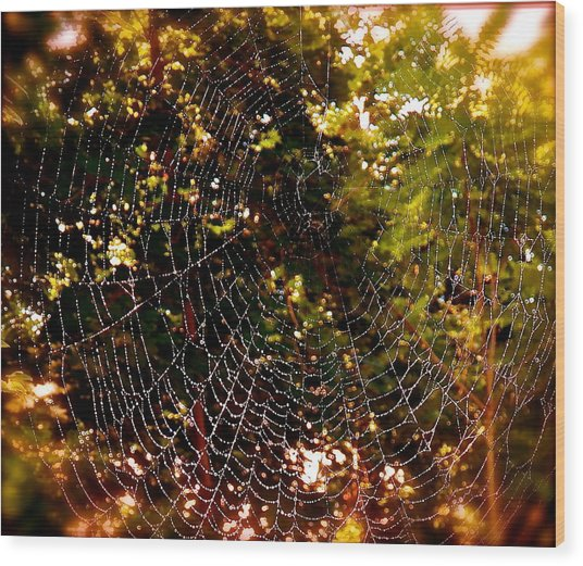 Web Illusion Wood Print by Gloria Warren