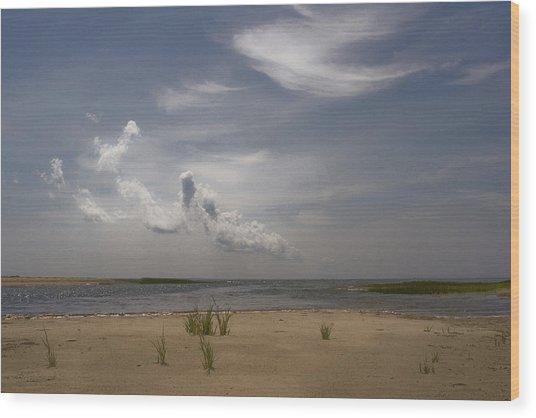 Wellfleet Shore Wood Print