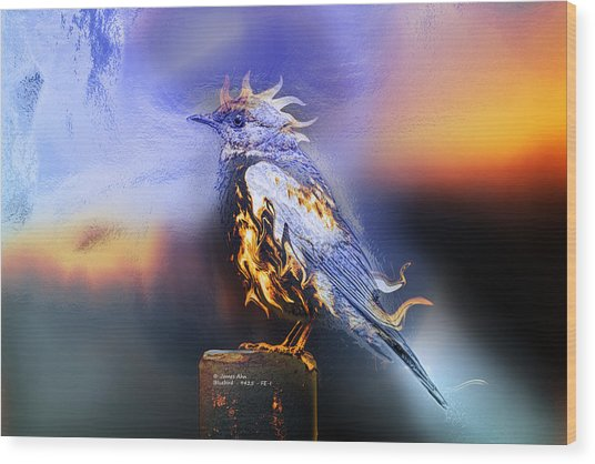 Western Bluebird Fire And Ice Wood Print