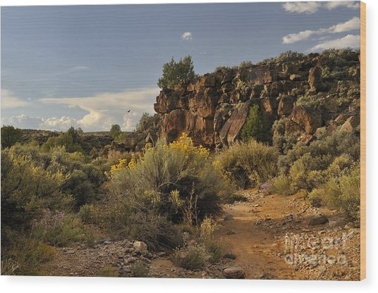 Westward Across The Mesa Wood Print