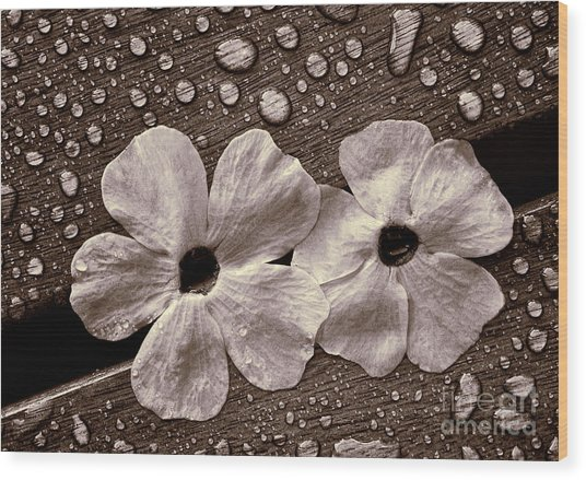 Wet Flowers And Wet Table Wood Print