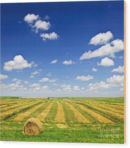 Wheat Farm Field At Harvest Wood Print