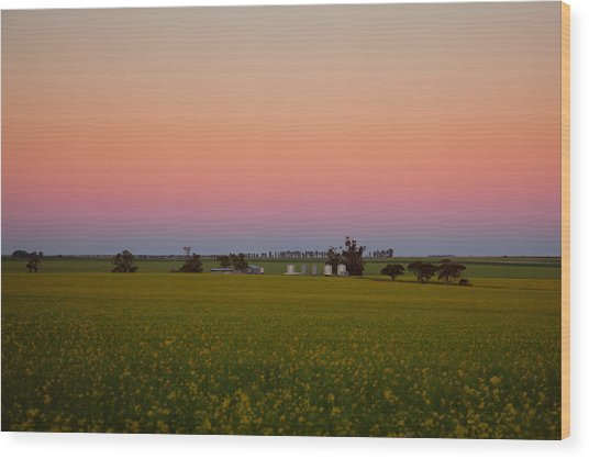 Wheatbelt Country Wood Print