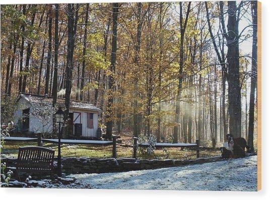 Where Fall Meets Winter Wood Print by Jennifer Compton