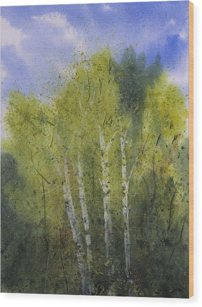 White Birch Trees Wood Print by Debbie Homewood