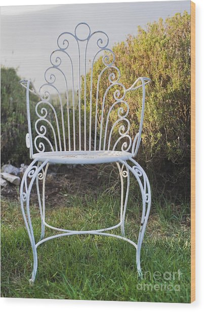 White Metal Garden Chair Wood Print by Noam Armonn