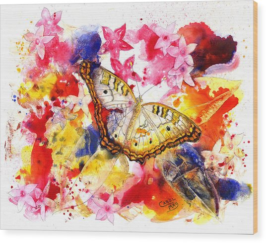 White Peacock Butterfly With Pentas Wood Print by Art by Carol May
