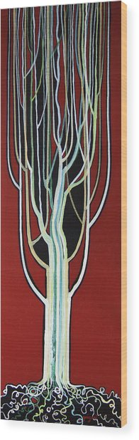 White Poplar Wood Print by Alain Guiguet