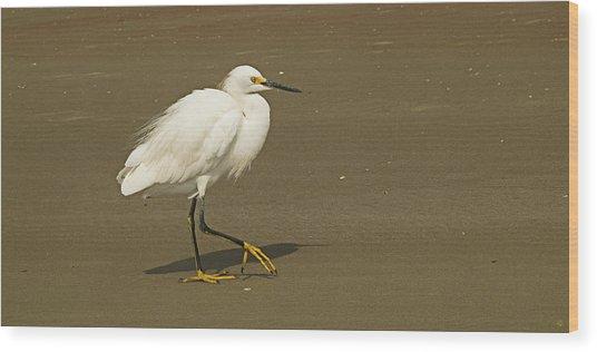 White Seabird Walking Wood Print