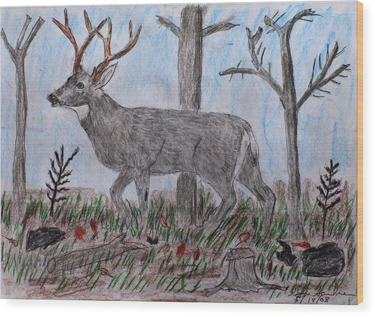 Whitetail Deer In A Meadow Wood Print