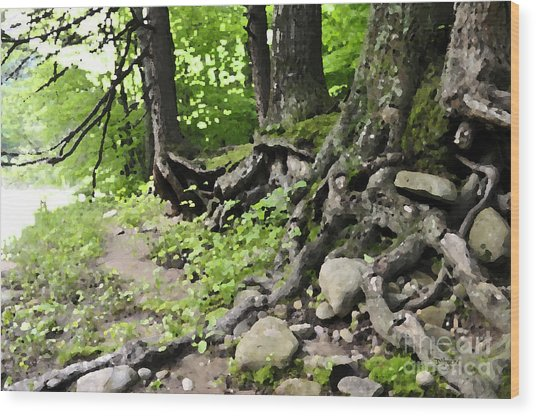 Wild Roots Wood Print