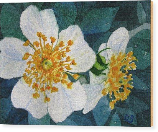 Wild Roses Wood Print by Debra Spinks