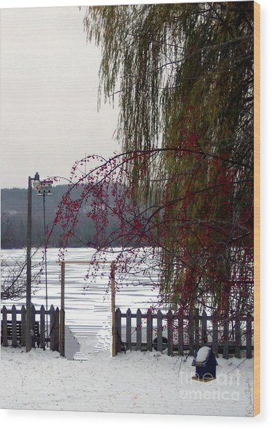 Willows And Berries In Winter Wood Print