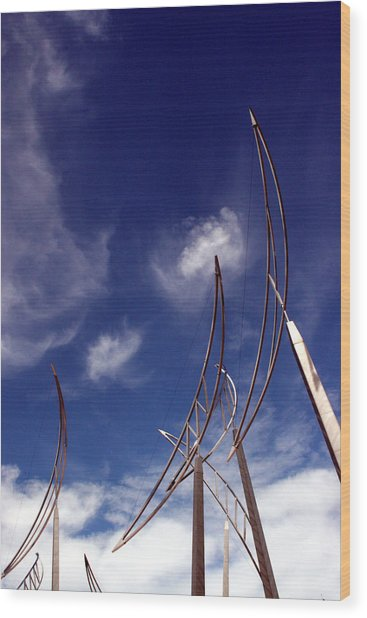 Wind Bows Wood Print by Robert  Stephenson