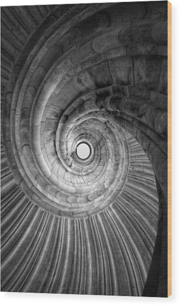 Winding Staircase Wood Print by Falko Follert