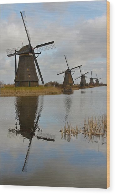 Windmills Wood Print by Javier Luces