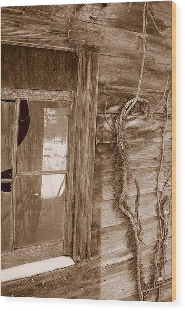 Window And Vine Wood Print
