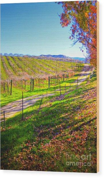 Winery Road Wood Print by Kelly Wade