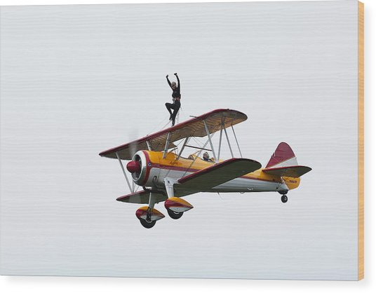 Wing Walker Wood Print by Sara Hudock