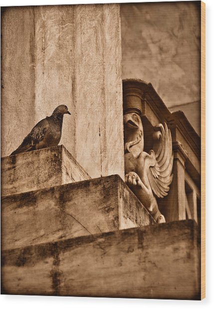 Athens, Greece - Winged Encounter Wood Print