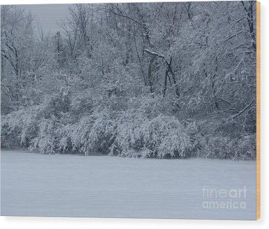 Winter Delight Wood Print by Cedric Hampton