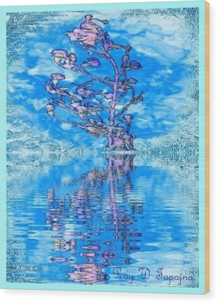 Winter Flowers For You Wood Print by Ray Tapajna
