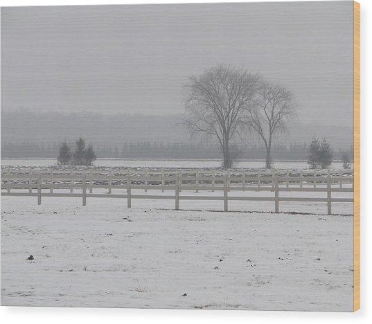 Winter Fog On The Paddocks Wood Print